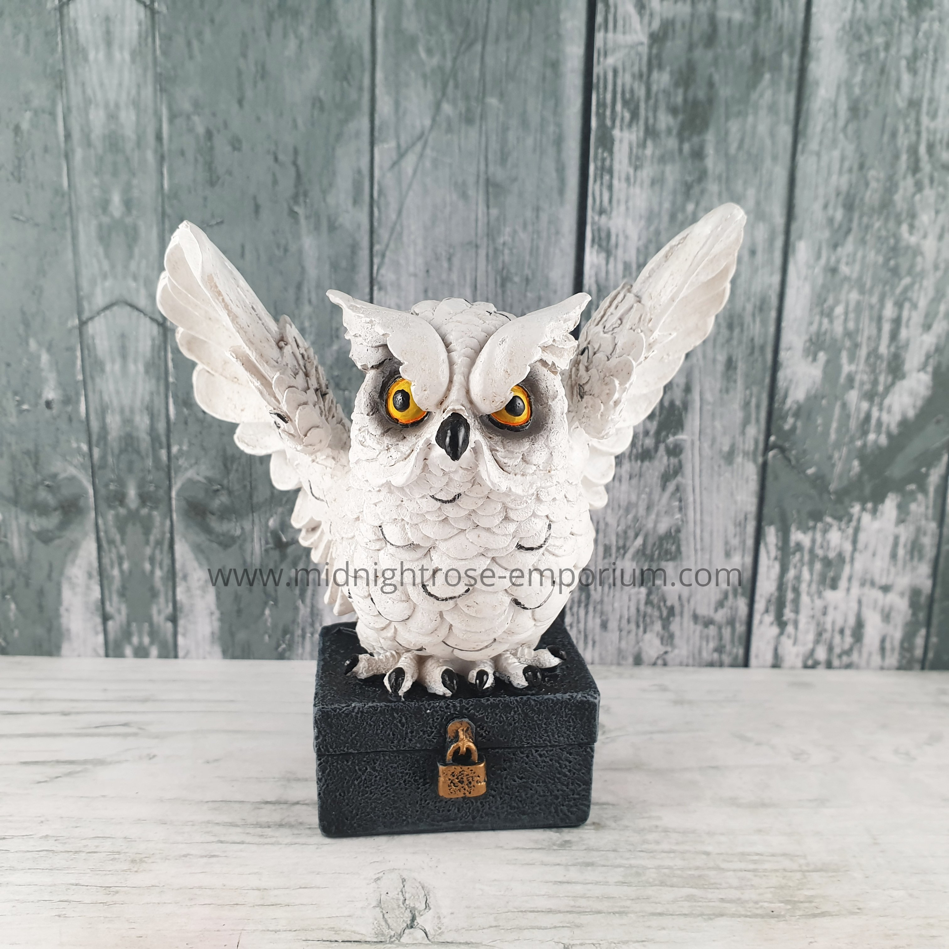'Archimedes' Owl on Chest Ornament