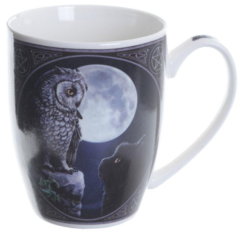 'Purrfect Wisdom' Owl & Cat Mug