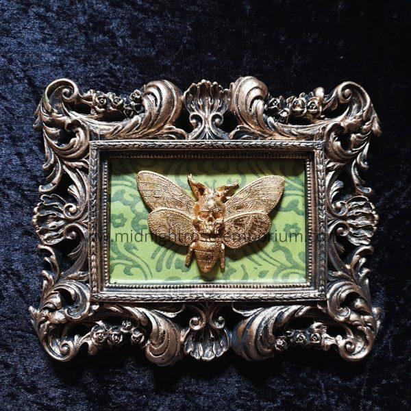 Macabre Mount Baroque Framed Moth Wall Plaque