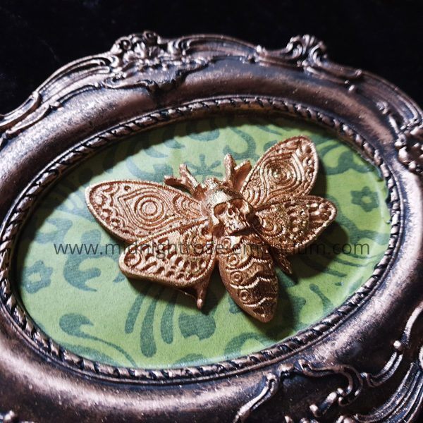 Moth Macabre Baroque Framed Wall Plaque