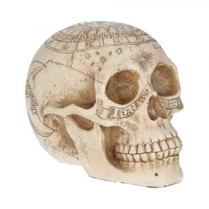 Astrological Skull Ornament 20cm