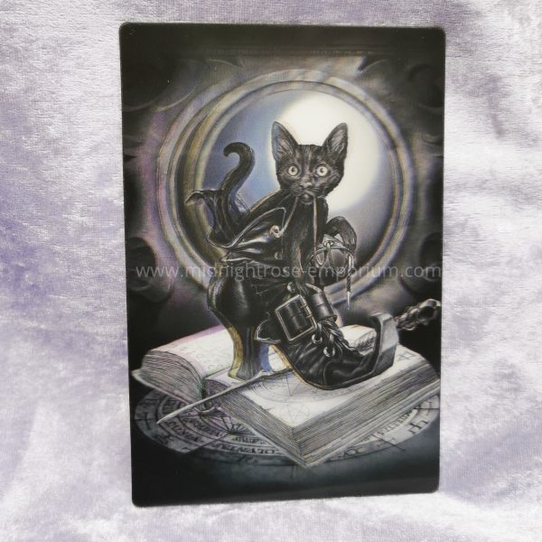 'Midnight Mischief' Black Cat in Boot 3D Postcard