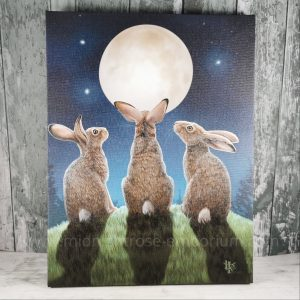 Moon Shadows Canvas Plaque by Lisa Parker