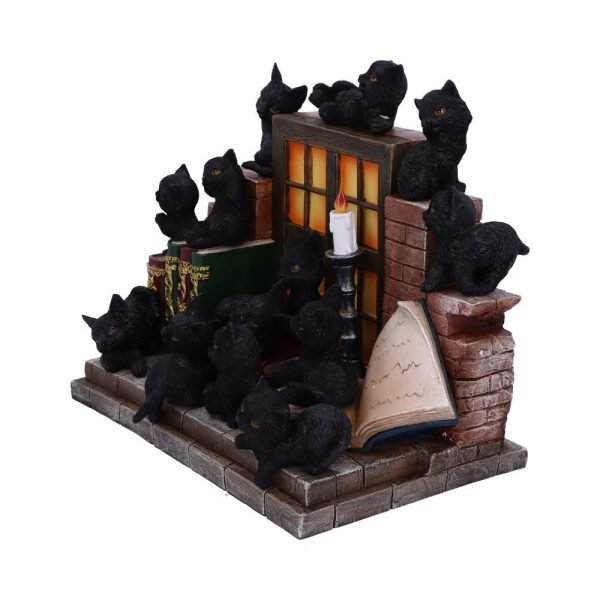 The Witches Litter 36 piece Display Set - PRE ORDER